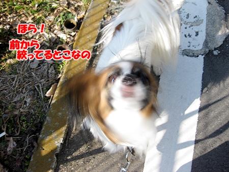6_20110209012413.jpg