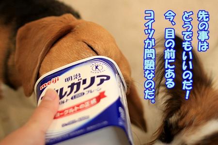 6_20110225191226.jpg