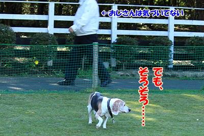7_20101104013828.jpg
