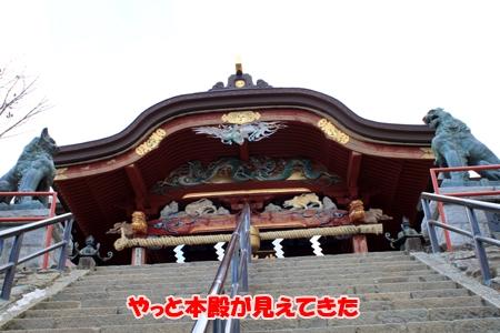 7_20110131224812.jpg