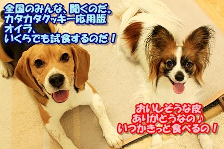 8_20110303000238.jpg