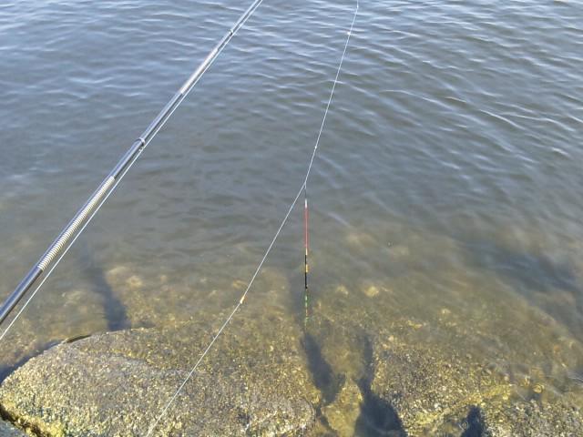 釣り開始♪
