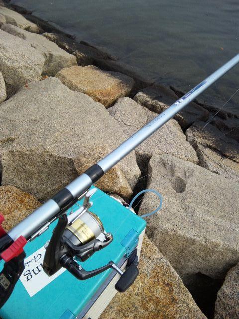 今年の釣り納め