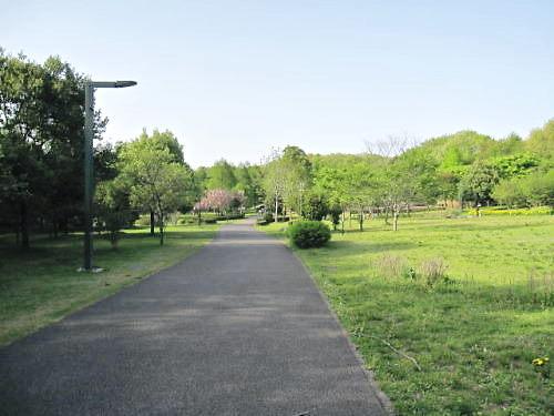 2011長岡公園283