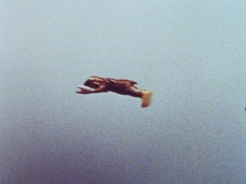 飛んで逃げるバルタン