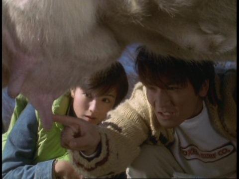 牛の乳搾りに挑戦するダイゴ・レナ両隊員