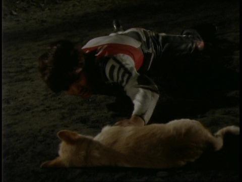 ダイゴ隊員が子犬に触れると、光がガーディーの石像へ