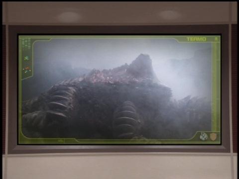 龍厳岳で発見されたグランゴンの死骸