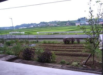 docilitacasalinga201083