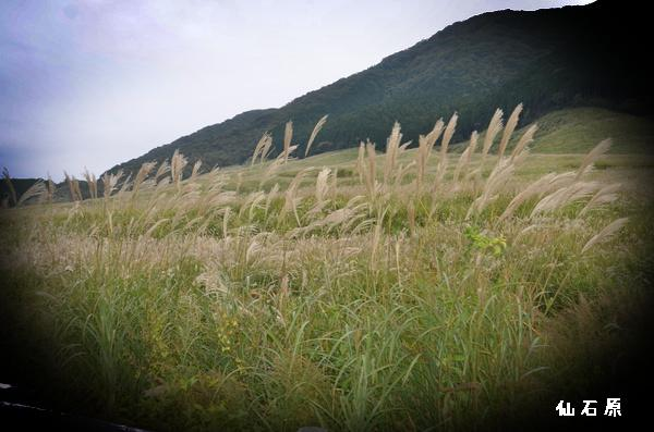 箱根 仙石原