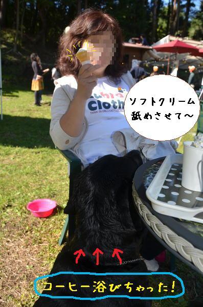 びしょぬれ