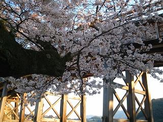 京都・岩国・岐阜 098