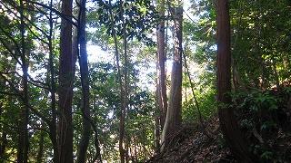 吉野・京都~室町探索 058