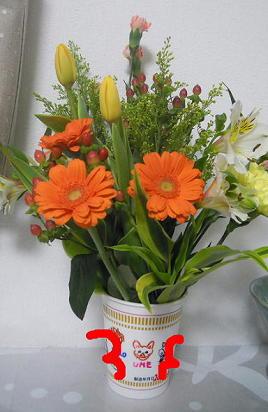 ビタミンカラーお花