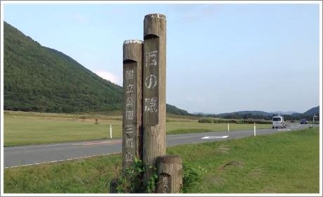 nishinohara03.jpg