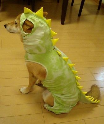 BD恐竜2