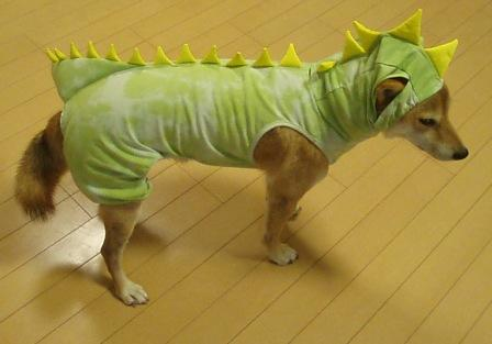 BD恐竜5