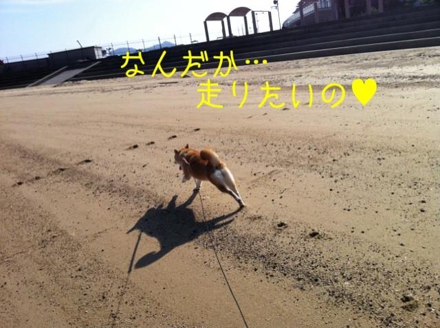 moblog_d8384039.jpg