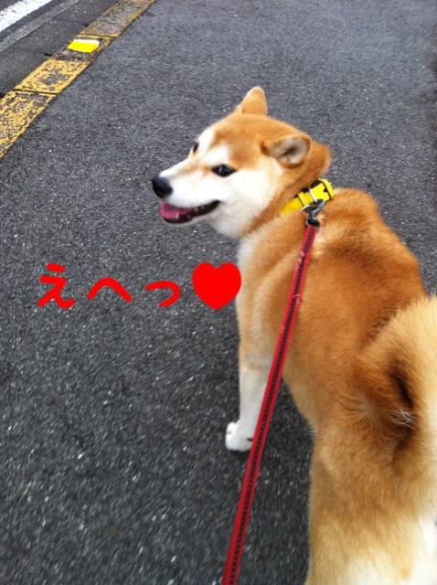 moblog_fb800514.jpg