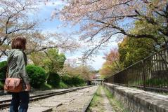 2011.4.17お花見&けん誕生日 008
