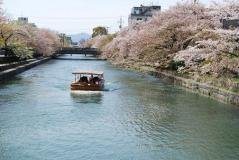 2011.4.17お花見&けん誕生日 026