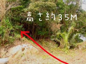 裏山への入口