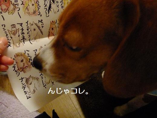 022_20110227223344.jpg