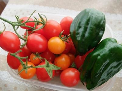 ミニトマトとピーマン