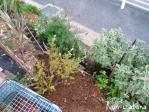 増設した土留め花壇を真上から♪