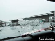 今日は冷たい雨