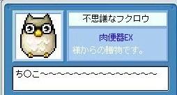 Maple110222_224452.jpg