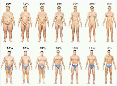 ダイエット、体脂肪、肥満予防、愛知、減量、メタボ