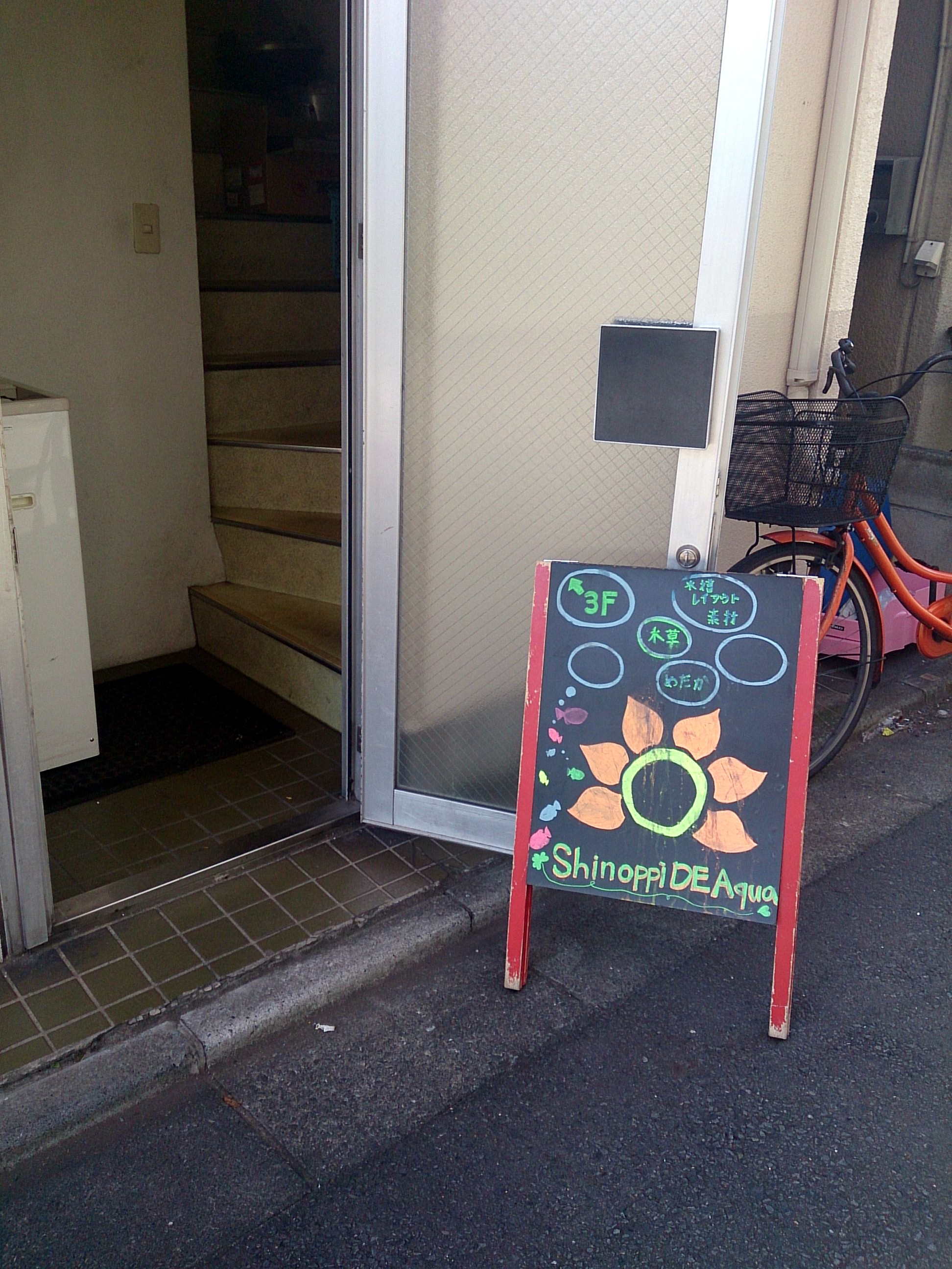 ShinoppiDeAqua_20141214.jpg