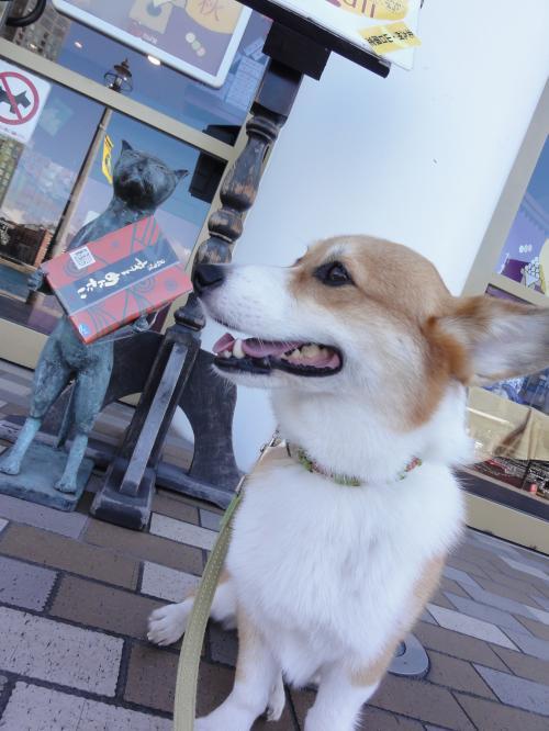 yuzu_20121004194103.jpg