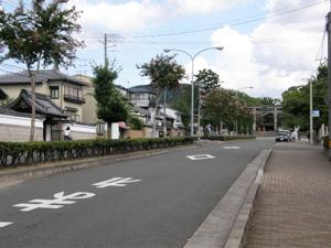 nanajyoshitami_201009_2.jpg