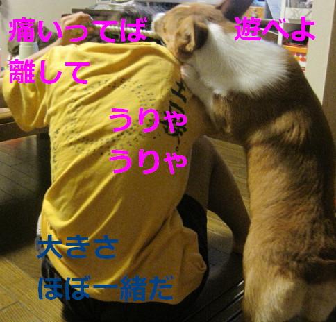 IMG_1740.jpg
