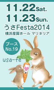 usafest2014-usa-fe.jpg