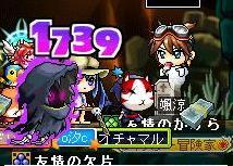Maple100624_060941.jpg