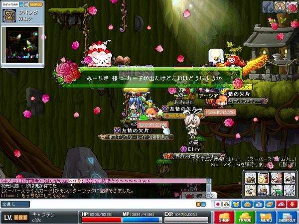 Maple101022_220304.jpg