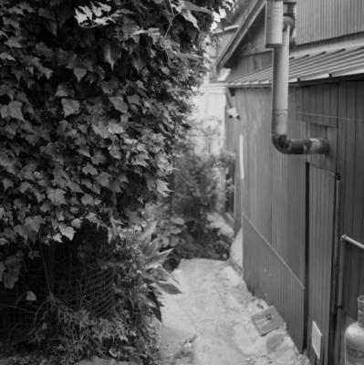 20110605Onomichi_Autocord_Presto_19.jpg
