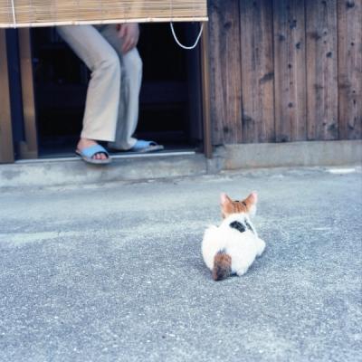 20110814_Okikamuro_Rolleiflex28F_Ektar__1.jpg