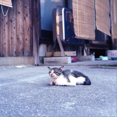 20110814_Okikamuro_Rolleiflex28F_Ektar__5.jpg