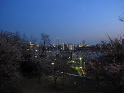 2011_04Osampo0012.jpg