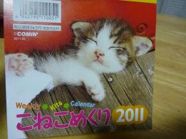 P1020112-m.jpg