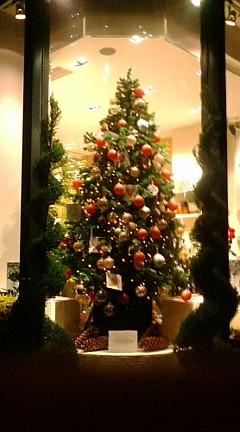 201011クリスマスツリー