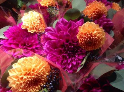 S20140925品川エキュート秋の花