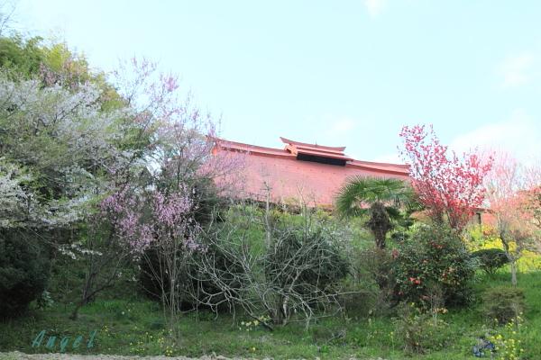 三春の民家(37)