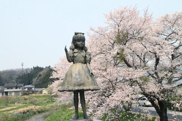 夏井川千本桜(147)