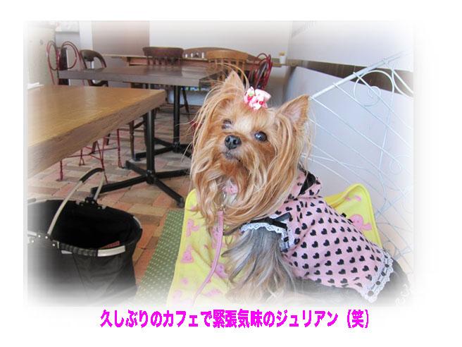 IMG_2899.jpg