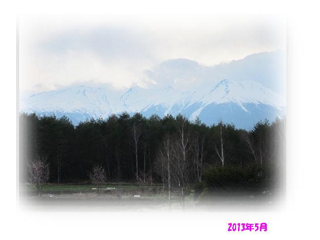 IMG_7173a.jpg